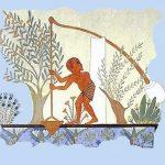 EGYPTENAREN DE SJADOEF